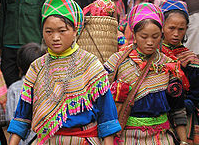 Help Us Collect Hmong Culture